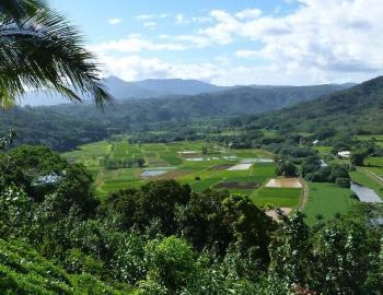 hanalei town kauai