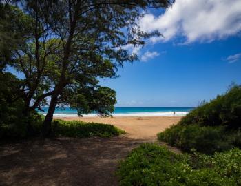 Kealia Beach Kauai