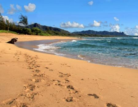 East Side Kauai