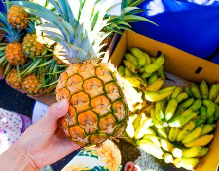 Farmers Market Kauai